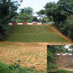 erosion-control-slope-001