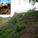 erosion-control-slope-003
