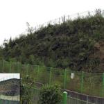 erosion-control-slope-006