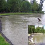 shoreline-streambank-009